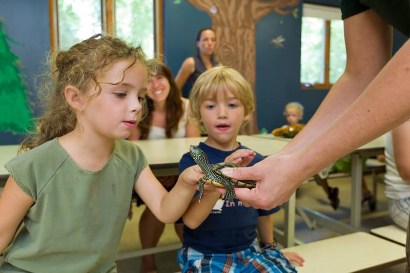 kids looking at a turtle at the Zoo Ecomuseum