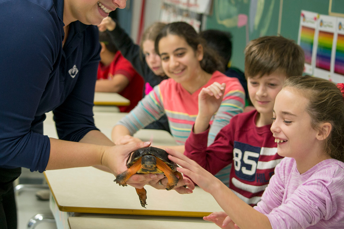 students touching a turtle during a classroom presentation on cold-blooded animals by one of Ecomuseum Zoo's zookeeper.