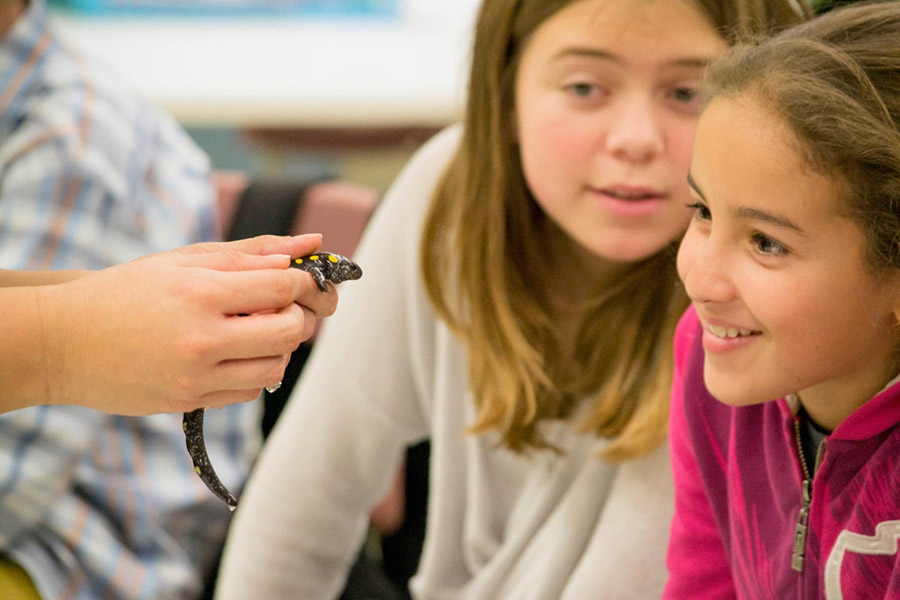 students fascinated by a yellow-spotted salamander from the Zoo Ecomuseum